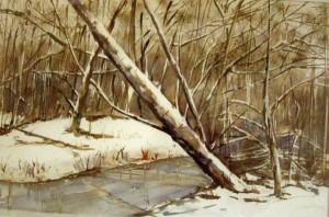 natura con neve