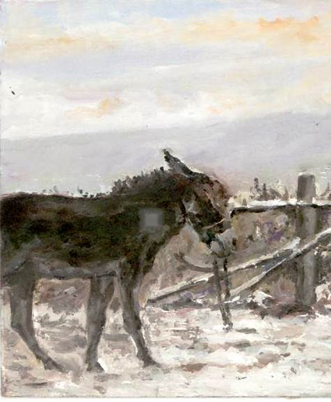 Scena invernale con asino
